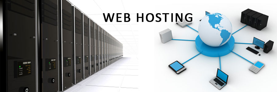 Business web site hosting
